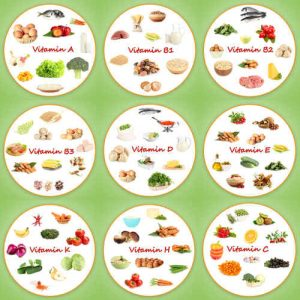 fonctionnement de notre organisme et rôle des vitamines