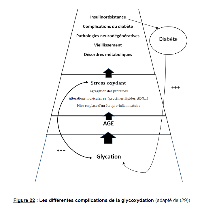 glycation ou réaction de Maillard